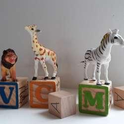 Het verhaal van de giraffe, de leeuw en de zebra